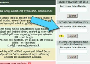 "G.C.E ""A"" Level Exam Results Release @ www.Doenets.lk 20 Dec 2013"